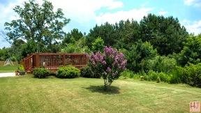 Patio, deck, back lawn 250 y.o. Oak in background, midget Crape Myrtle foreground.